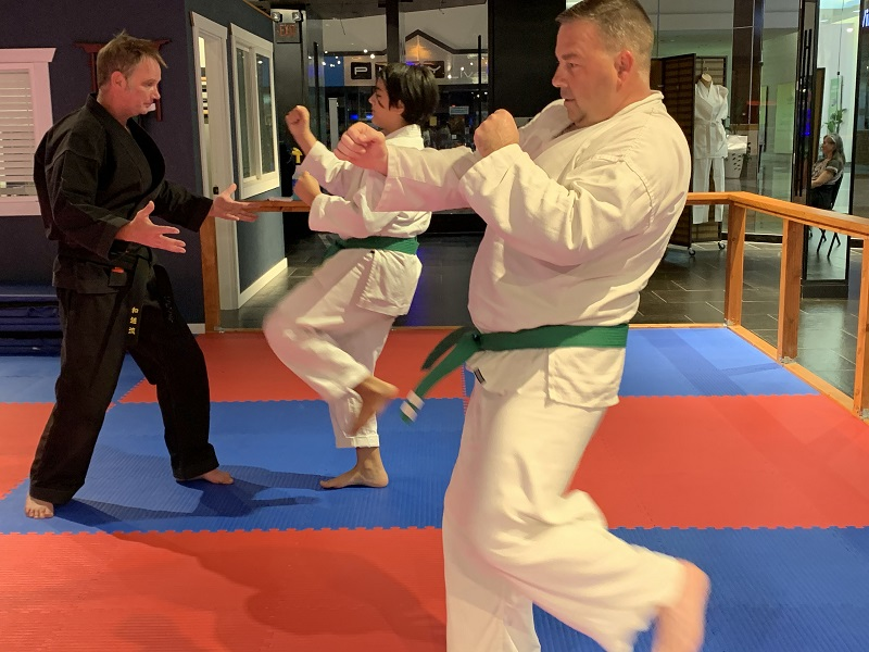 adult martial arts lesson in olympia